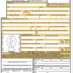 DS-11 passport form