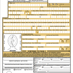 DS 11 New Passport Form Application
