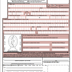 Passport Form DS 5504
