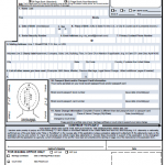 DS-82 - Passport Renewal Form - Passport Info Guide